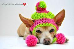 Gorros tejidos para perros y gatos - Ideales para el Invierno y ...