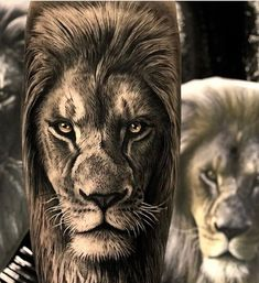 - only best tattoos - Artist . 📣📢you want a shoutout? Lion Leg Tattoo, Tiger Tattoo Sleeve, Lion Tattoo Sleeves, Lion Head Tattoos, Mens Lion Tattoo, Lion Tattoo Design, Leg Tattoo Men, Leg Tattoos, Sleeve Tattoos