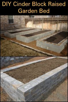 What sort of produce will you be growing in your cinder block raised garden bed?