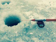 北海道では氷に穴を開けてワカサギという魚を釣ります。 In Japan Hokkaido, people can go fishing at frozen lake