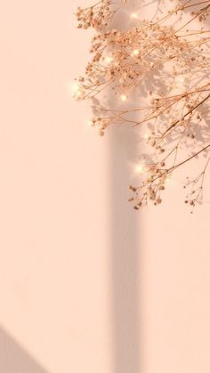 Flower Background Images, Gold Wallpaper Background, Rose Gold Wallpaper, Phone Wallpaper Images, Flower Phone Wallpaper, Iphone Wallpaper Tumblr Aesthetic, Aesthetic Pastel Wallpaper, Wallpaper Backgrounds, Free Background Photos