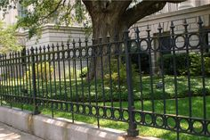 Wrought Iron Fences -This classic wrought iron fence surrounds a government building