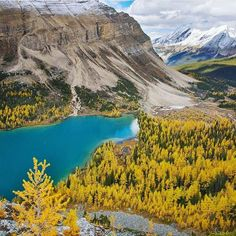 Banf National Park Alberta  Photograph By @picobac by wonderful.globe