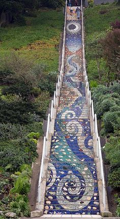 16th Avenue Tiled Steps project has been a neighborhood effort to create a beautiful mosaic running up the risers of the 163 steps located at 16th and Moraga in San Francisco