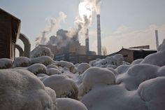 Obilić, Kosovo:   Ice covers vegetation at the main Kosovo power plant on Jan. 11.