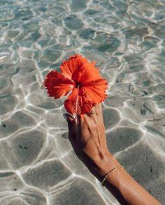 Beach Aesthetic, Flower Aesthetic, Aesthetic Collage, Summer Aesthetic, Aesthetic Girl, Summer Wallpaper, Beach Wallpaper, Photo Wall Collage, Picture Wall