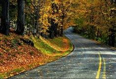 Image result for Pics of road that go into the disances