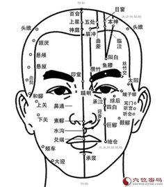 冲脉脉图 Chong Mai Diagrams ( Chong Meridian / Surging Vessel