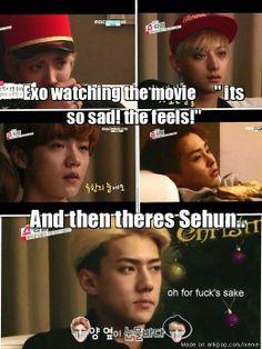 Oh Sehun, please.........