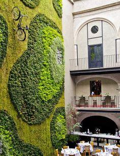 Restaurante Padrinos, México: comer al fresco