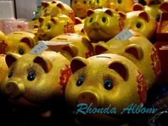 """Piggy Banks"" at the Chinese New Year Festival in Auckland 2014"