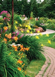 Daylilies..good with aztec grass
