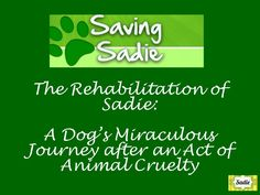 Saving Sadie: A Dog's Miraculous Journey #MyStartUpStory. Please share! :)