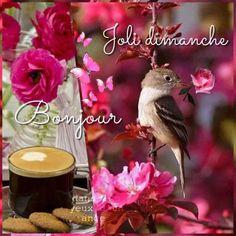 Bird Feeders, Outdoor Decor, Home Decor, Good Night, Happy Sunday, Pretty, Bonjour, Welcome, Decoration Home