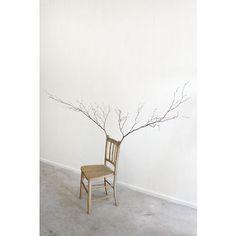 椅子の木|アート|WORKS|角文平:公式ウェブサイト
