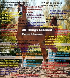 30 Things Learned from Horses - there's nothing wrong with a pair of new shoes every month:)