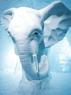 Impressive elephant sculpture at the Swedish Ice Hotel.