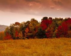 beautiful landscape pictures - Google Search