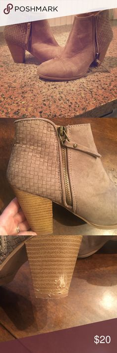 Booties Taupe booties, lightly worn. Right heel also got a little love from a cute Labrador  Charlotte Russe Shoes Ankle Boots & Booties