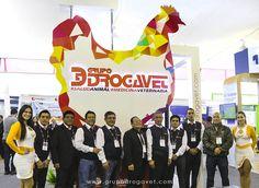 Exitosa participación de Grupo Drogavet en el IX Seminario Internacional AMEVEA PERÚ 2017