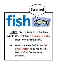 94 Best Idioms For Kids Images In 2014 Idioms English