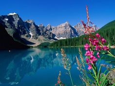 Beautiful #photography of the Canadian Rockies, Alberta