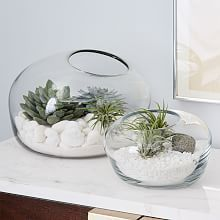 Green house effect. With its concrete base and simple, stylish design, this glass House Terrarium is great for arranging your succulents, ferns and small flowers.