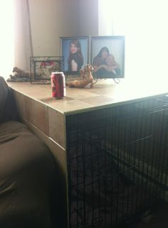 Great idea to cover up a dog crate to make an attractive table out of ...