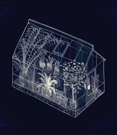 A. Frois - Green House