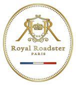 * R o y a l - R o a d s t e r * Electric Bicycle, New Experience, French, Paris, Electric Push Bike, Montmartre Paris, French People, Paris France, French Language