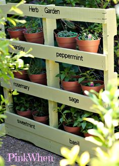 Herb garden made from a pallet.