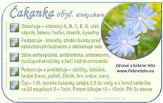Info obrazok cakanka Natural Health, Diabetes, Detox, Herbs, Magic, Food, Nature, Meal, Essen