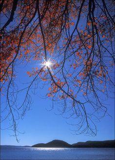 #nature #sky #tree #sun #lake #water #mountains #blue