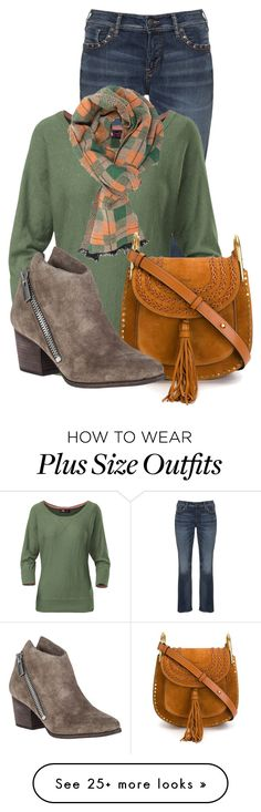 """Untitled #13461"" by nanette-253 on Polyvore featuring Silver Jeans Co., The North Face, DIBI, Chloé and belle by Sigerson Morrison"