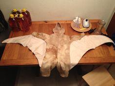 """Homemade """"flying"""" dinosaur costume."""