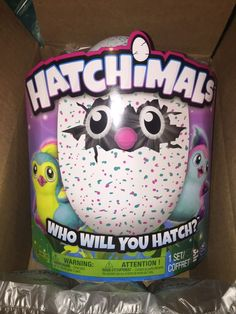 Hatchimals Pengualas Pink / Teal Egg - New in Box Spin Master Fast Shipping  | eBay