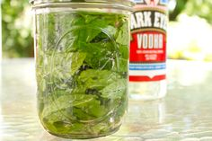 10 things you didn't know you could do with extra herbs: Extracts, soap, bug repellant, you name it and they have it!