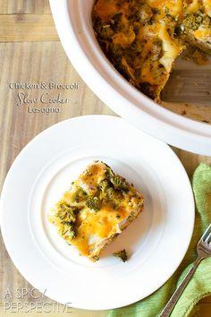 Cozy Chicken Broccoli Slow Cooker Lasagna