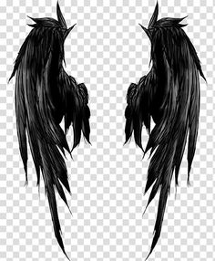 on back spine Angel Wings Png, Angel Wings Drawing, Demon Wings, Black Angel Wings, Fairy Wings, Wing Tattoos On Back, Back Tattoo, Engel Tattoo, Wings Wallpaper