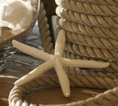 House Revivals: How to Make Faux Starfish {Inspired by Nature and Pottery Barn}