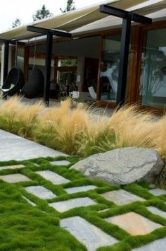 """Love that green smooth velvet grass on the path and the feather like tall grass as well.      --  """"The low grass is Korean Velvet grass The tall grass in Mexican Feather grass""""      --  Grounded - Modern Landscape Architecture contemporary exterior #ModernLandscape #modernlandscaping"""