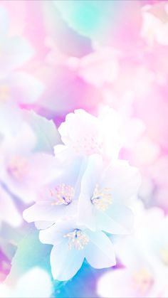 Side Of Flower Flower Vibes Pinterest Iphone Wallpaper