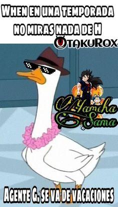 Unas vacaciones Síganme papus Yamcha-Sama y tendrán un nepe shiny de nivel 100 con mega evolución . anime meme en español