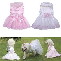 Luxury Pearl Collar, with Flower, Dog Skirt Wedding Dresses For Dog, Quality Made #miniaturepinscherlovers