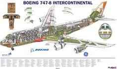 747-8I Cutaway from Flight International - Nov 2012