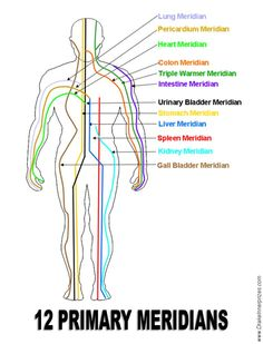 Primary meridians Repinned by  www.Trinity-Wellness-Solutions.com