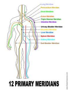 Primary meridians #balance #qigong http://www.shivohamyoga.nl/ #energy #flow #yinyang #medicalqigong