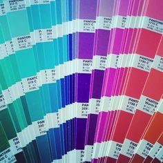 Love Colors!