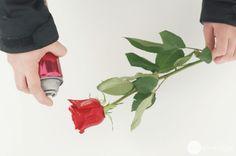 How To Make A Scented Vinegar Fabric Softener Rinse Argan Oil Hair, Hair Oil, Streak Free Windows, Cleaning Stainless Steel Appliances, Homemade Stain Removers, Diy Hair Spray, Homemade Glass Cleaner, Diy Vitamin C Serum, Diy Fleur