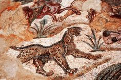 Ancient Roman mosaic. Picture taken on a trip to Tunisia, Africa